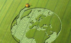 Prevenzione e contrasto del lavoro irregolare e dello sfruttamento nel settore agricolo