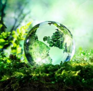 Progetti tradizionali 2019: Governance e informazione in materia di Ambiente