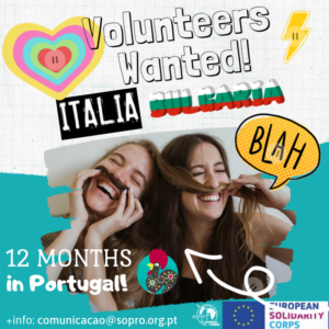 We are looking for 1 volunteer from Italy 🇮🇹
