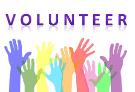 New training offer: Mentor in Volunteering activities - online training course
