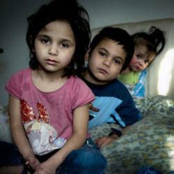 Integrazione dei Rom: relazione annuale UE